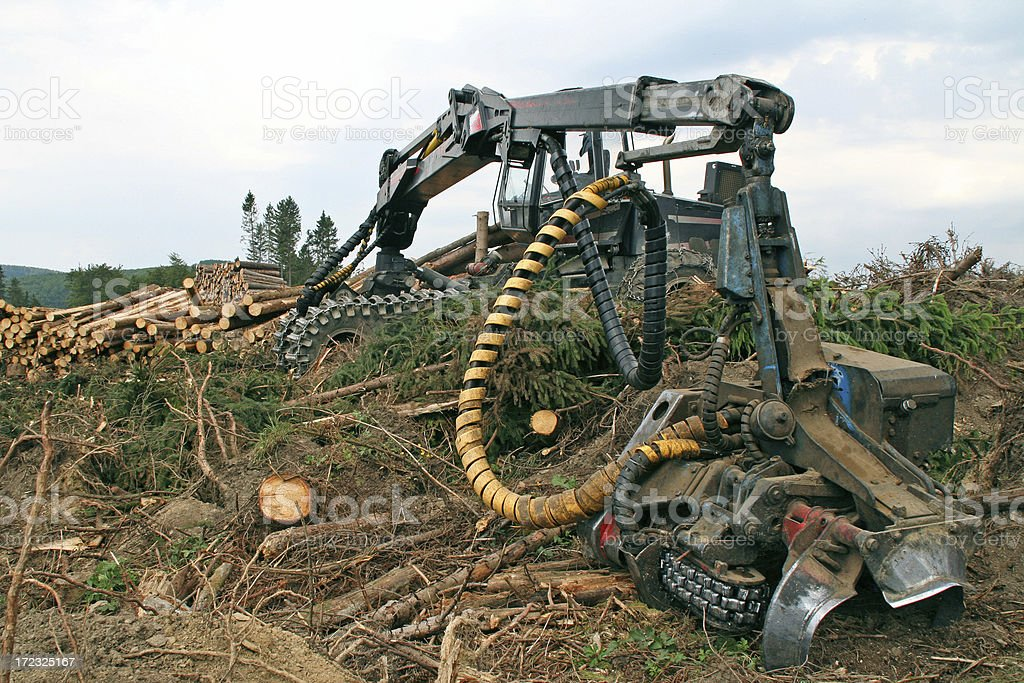 Sawing machine in the damaged forest # 1 stock photo