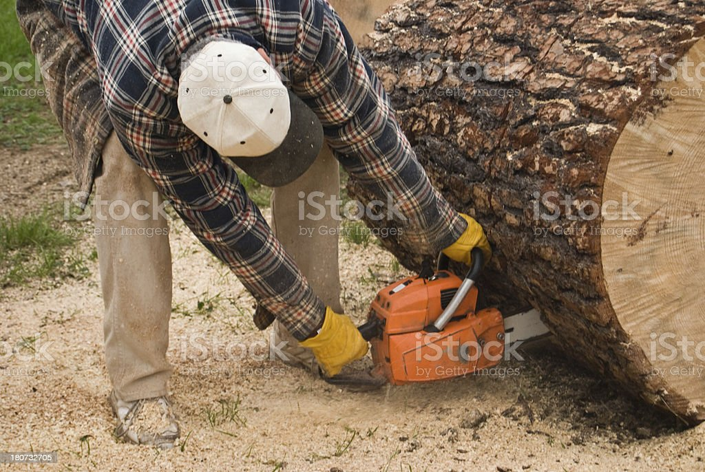 Sawing the Log royalty-free stock photo