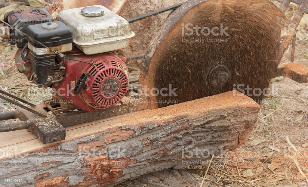 Sawmilling stock photo