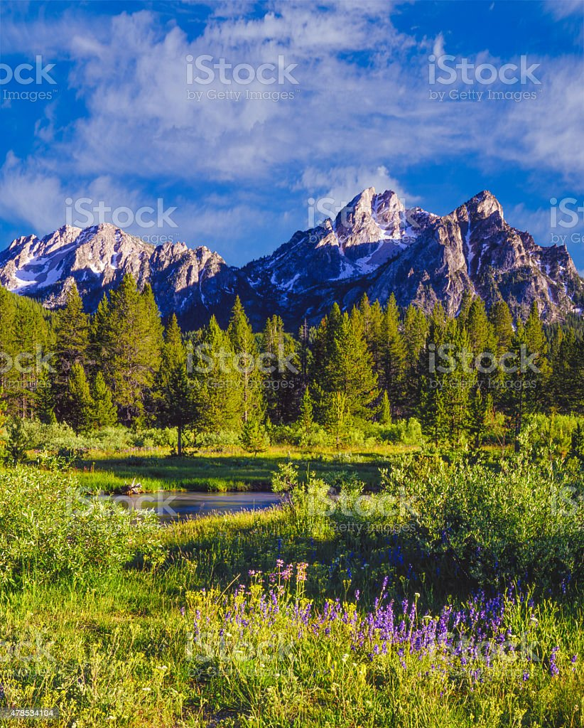 Sawtooth Mountain Range, Mc Gowan Peak,Stanley Idaho(P) stock photo