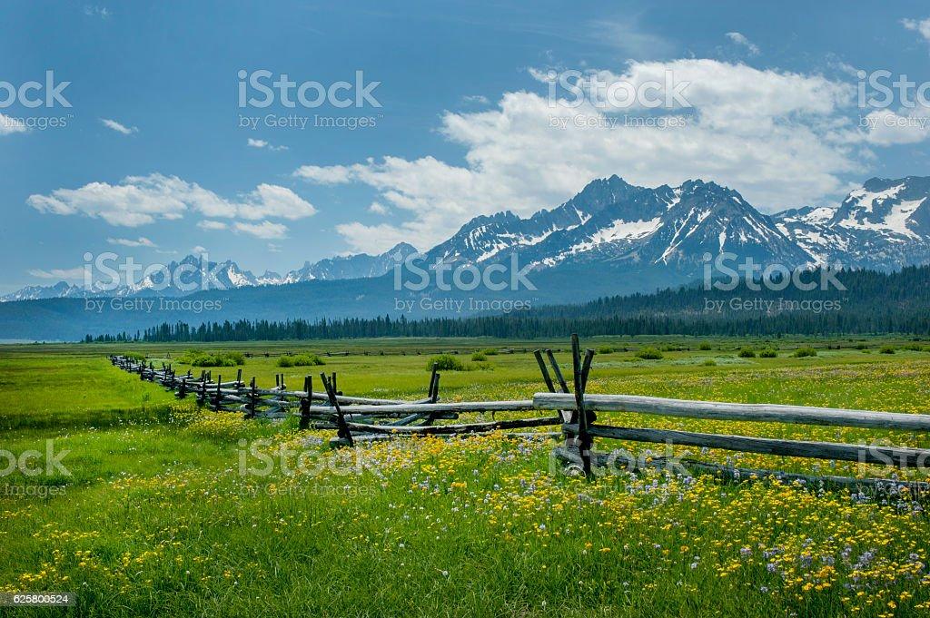 Sawtooth Range and Wildflowers, Idaho stock photo