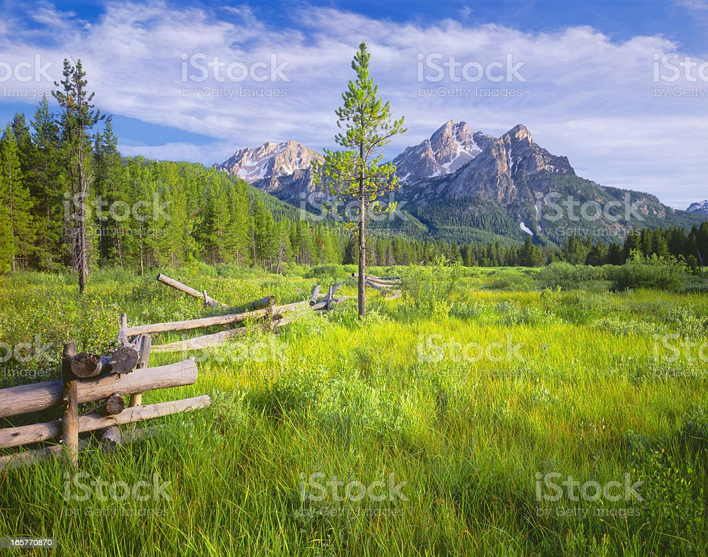 Sawtooth's Fresh Morning (P) royalty-free stock photo