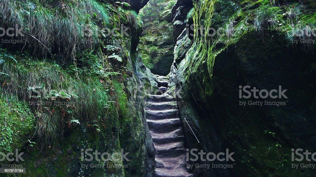 Sächsische Schweiz - Treppe Wilde Hölle stock photo