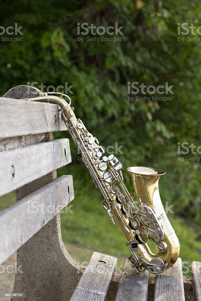 Saxophone Lake Park bench stock photo