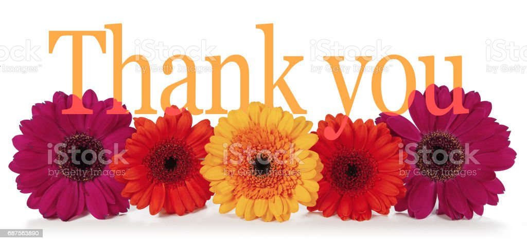 Saying Thank you with Flowers stock photo