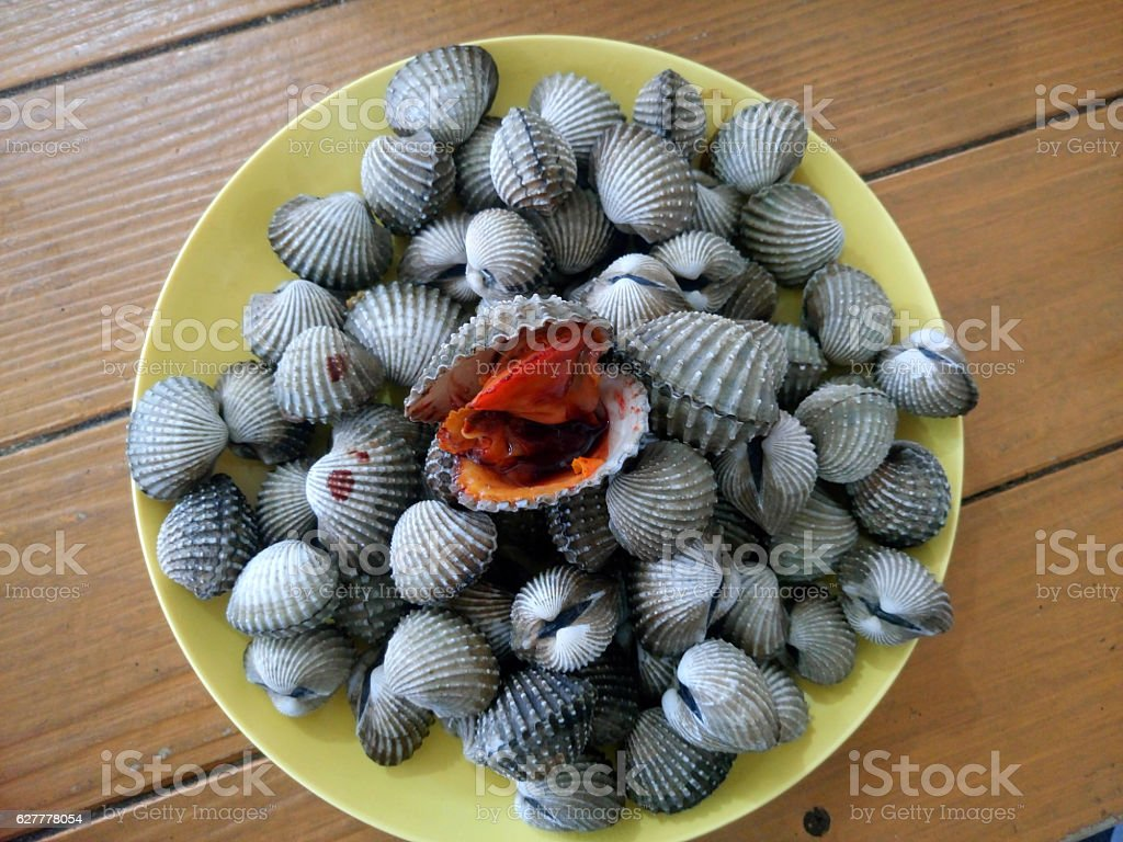 Scallop poached seafood of Thailand. stock photo