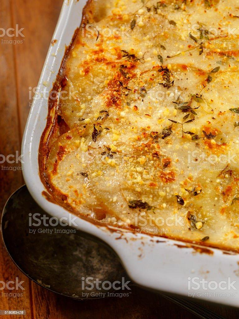 Scalloped Potatoes fresh Thyme stock photo