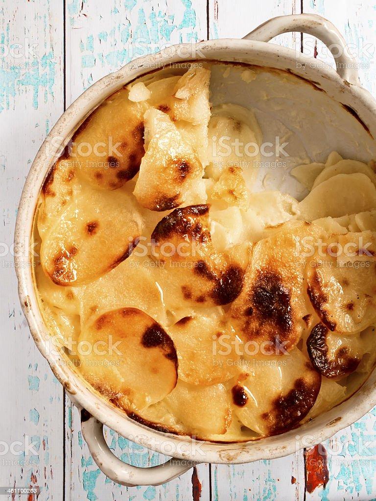 scalloped potatoes stock photo
