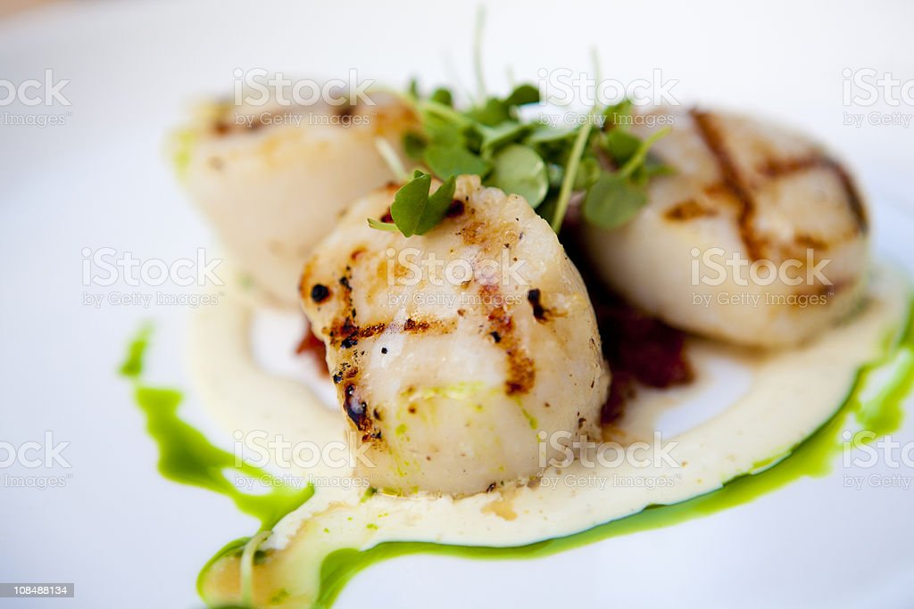 Scallops, Grilled stock photo