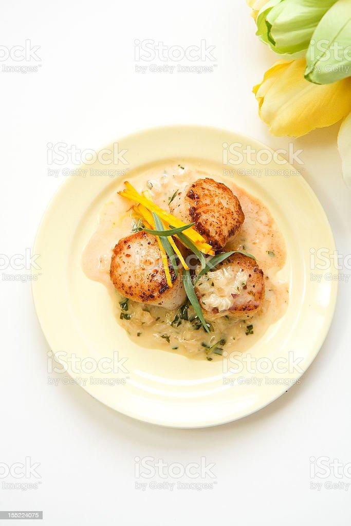 Scallops in tarragon  cream sauce royalty-free stock photo