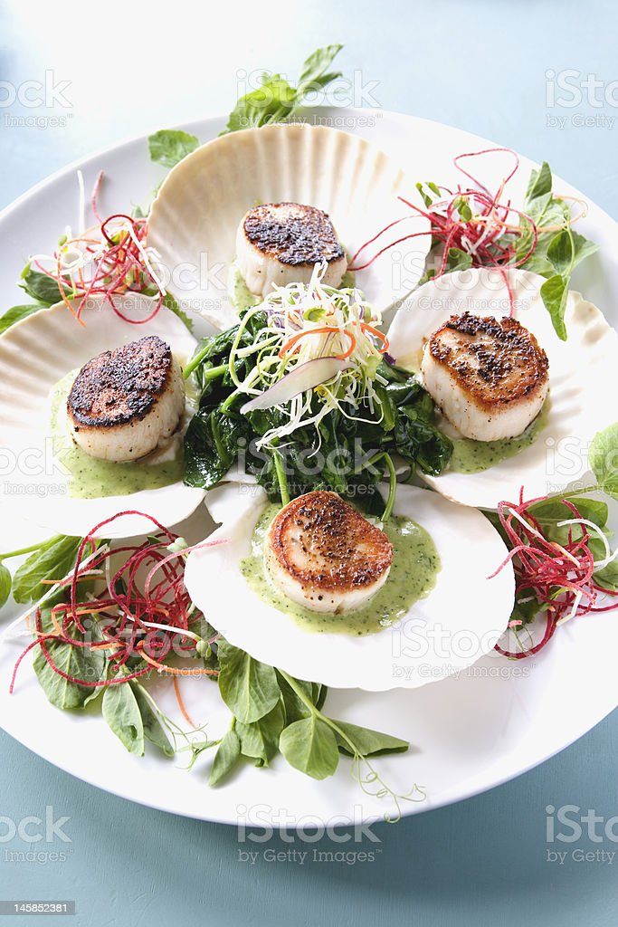 Scallops on Sea Shell Plates royalty-free stock photo