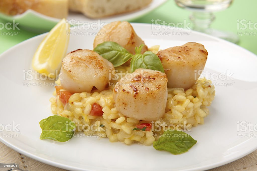 Scallops Risotto royalty-free stock photo