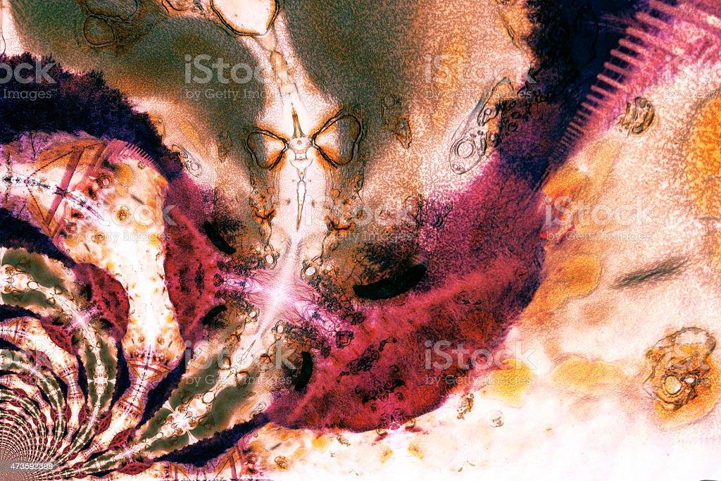 Scan of a burned color slide stock photo