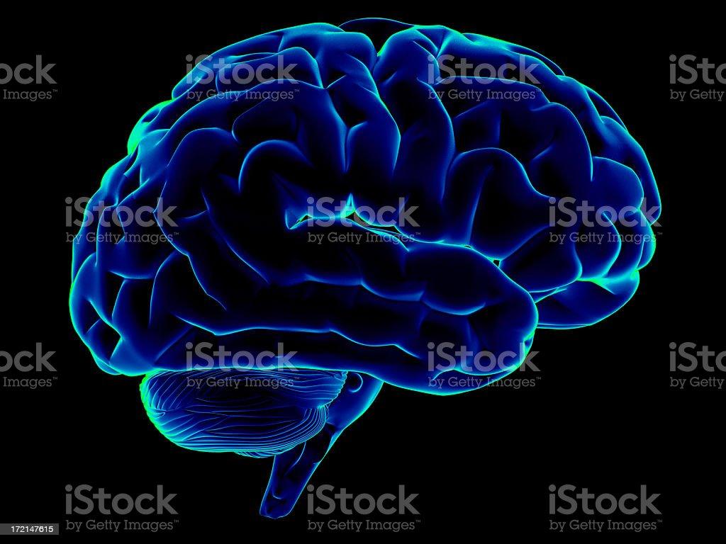 Scanning of a human brain stock photo