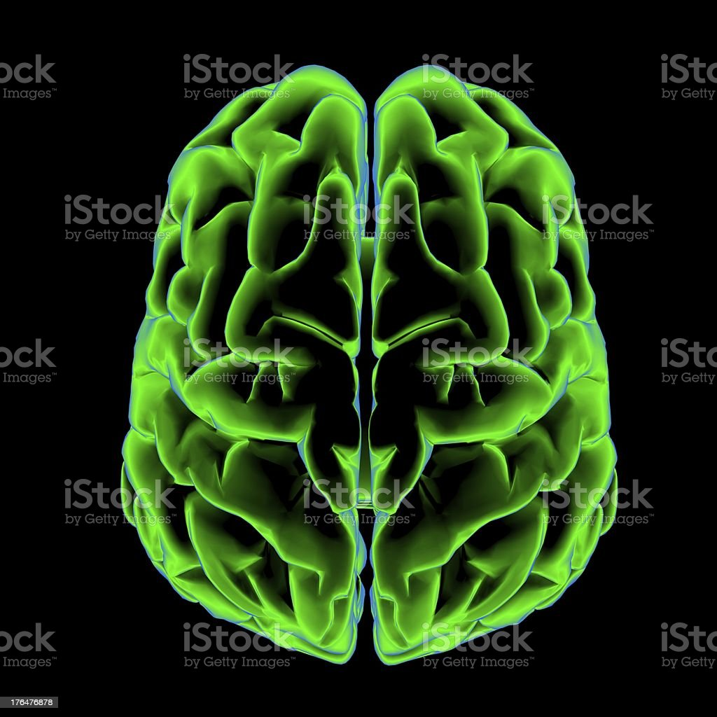 Scanning of a human brain stock photo
