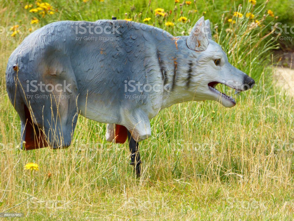 Scare Wolf stock photo