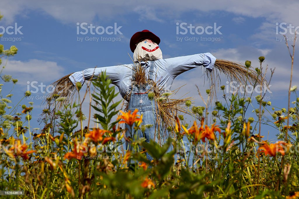 Scarecrow and Lilies stock photo