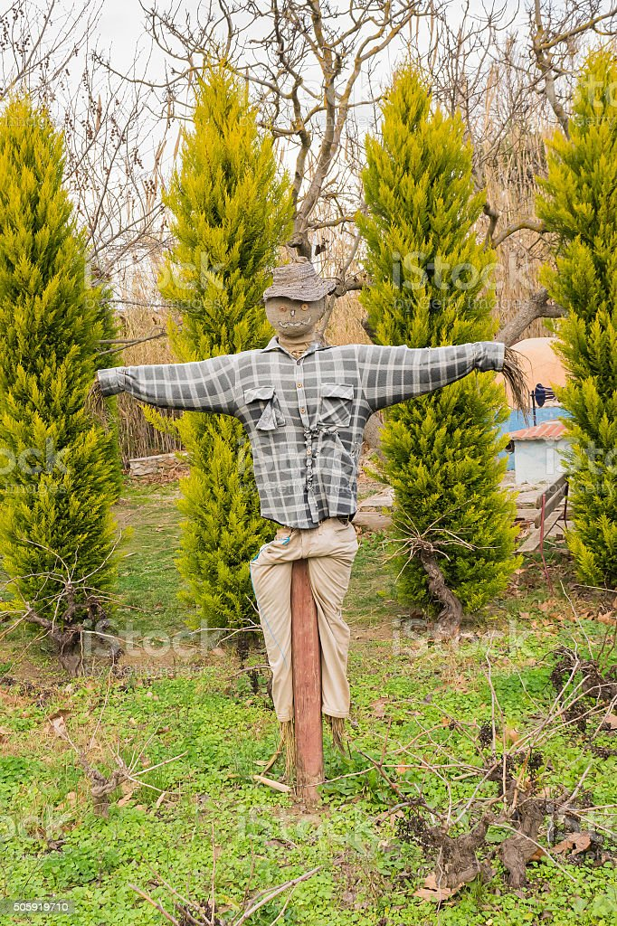 Scarecrow at a park wearing a t-shirt. stock photo