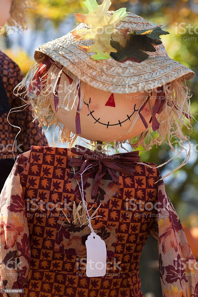 Scarecrow at an Ourdoor Market stock photo