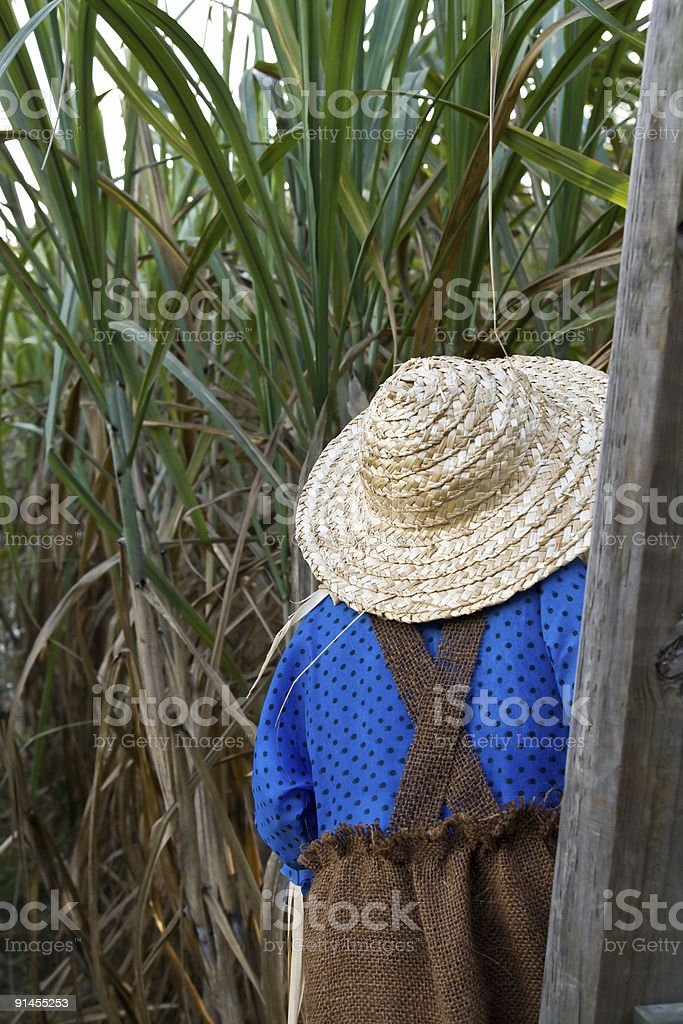 Scarecrow at Guard royalty-free stock photo