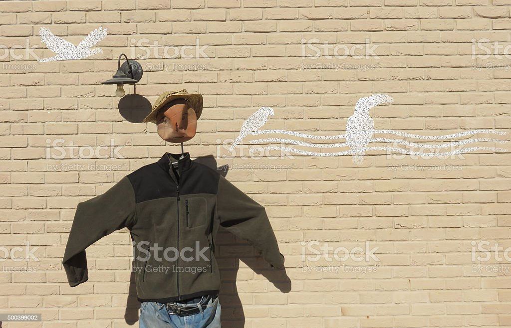 Scarecrow does not manage to scare birds ... stock photo