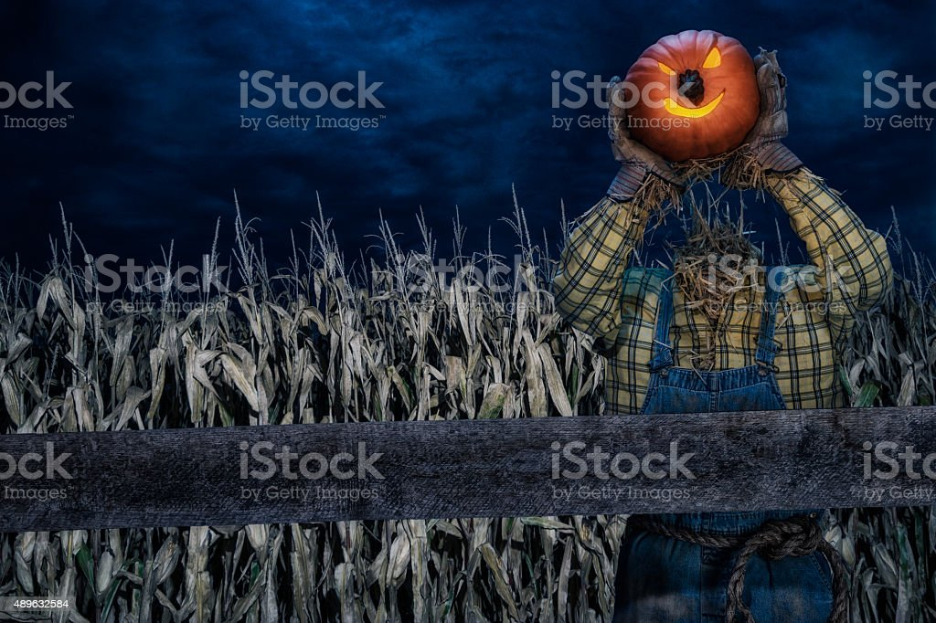 Scarecrow holding his head standing in corn field at night stock photo