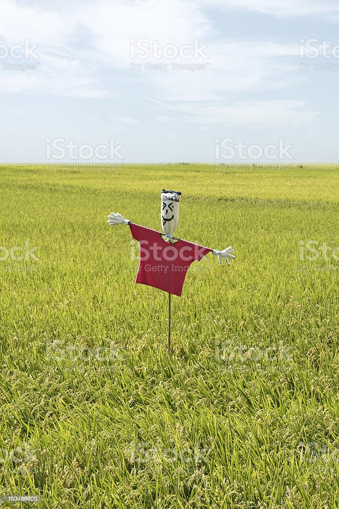 scarecrow in field royalty-free stock photo