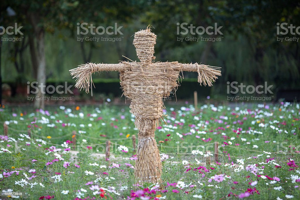 scarecrow in the flower bed stock photo