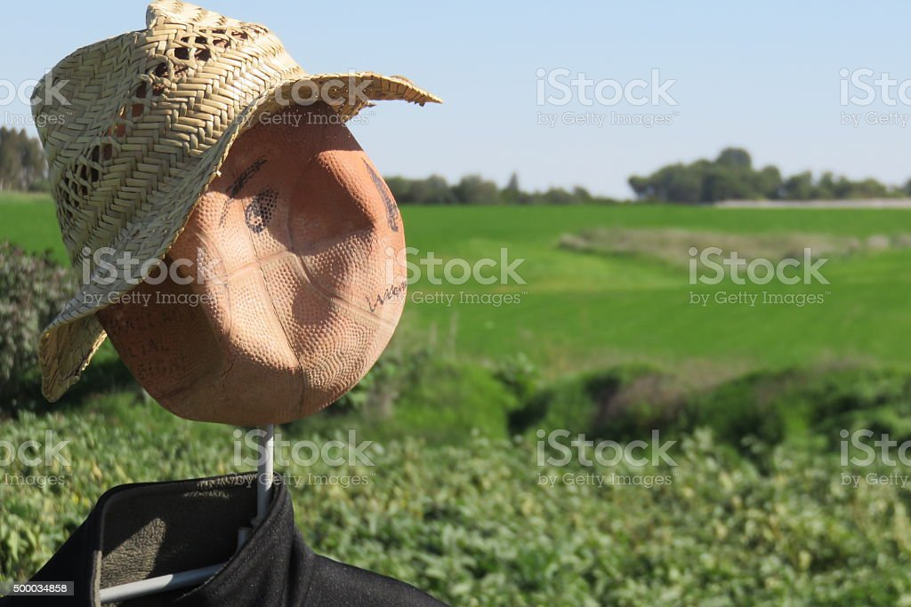 scarecrow looking sadly at the sun stock photo
