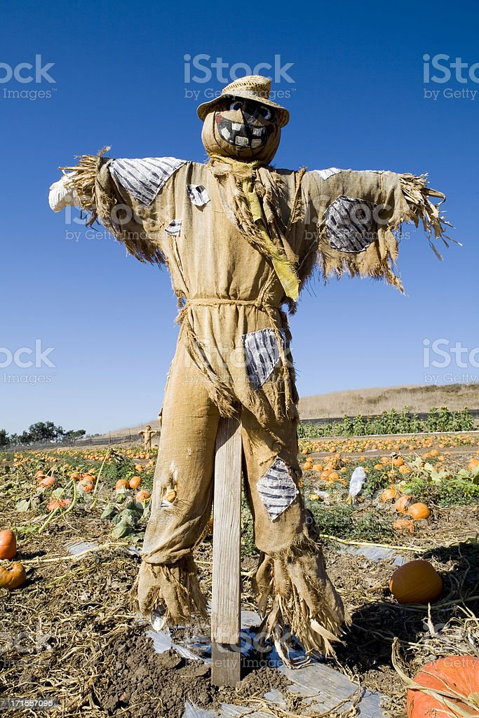 Scarecrow royalty-free stock photo