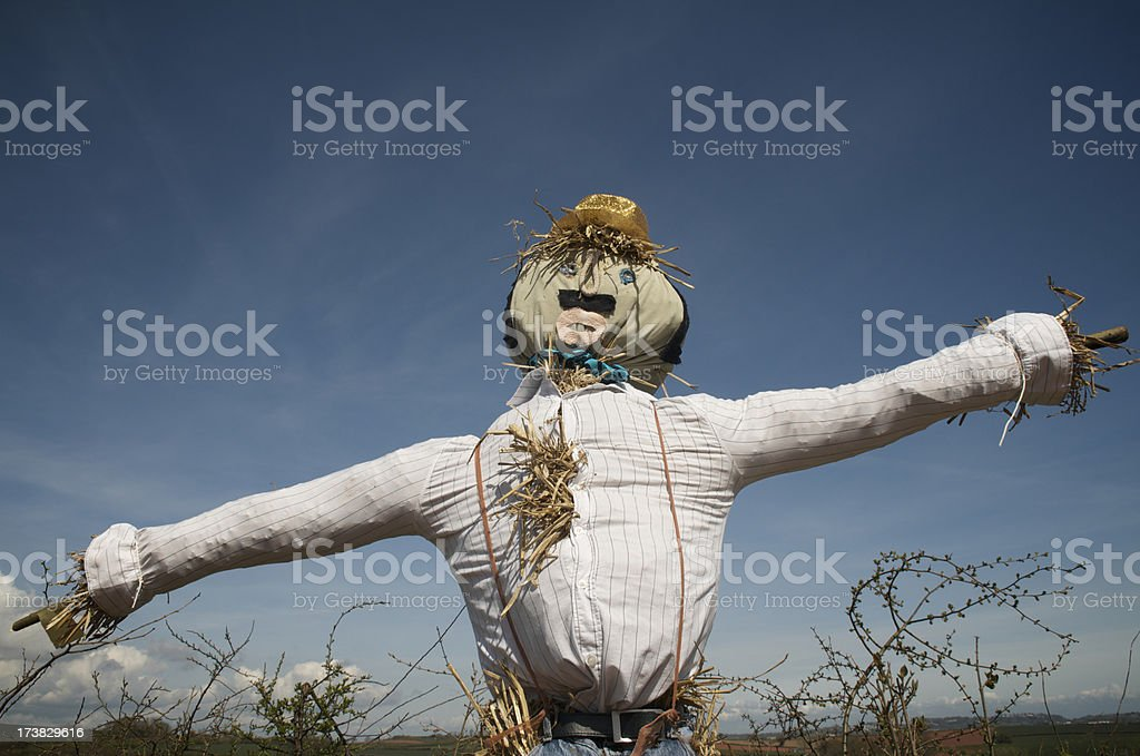 Scarecrow Spreads His Arms Blue Sky royalty-free stock photo
