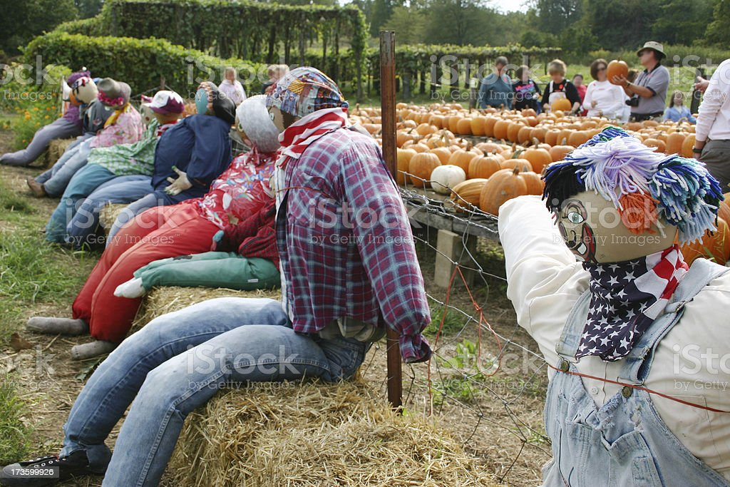 Scarecrows for Sale royalty-free stock photo