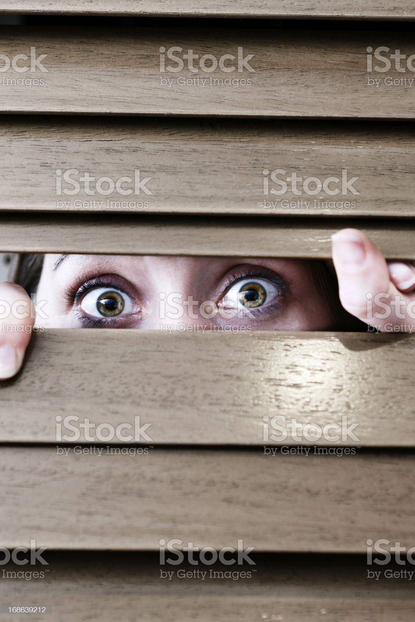 Scared woman peeps through blinds, vulnerable and nervous royalty-free stock photo