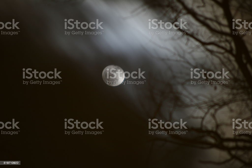 Scarey Night royalty-free stock photo
