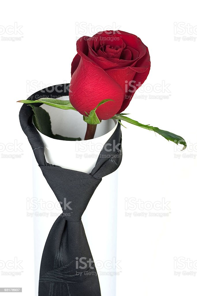 scarlet rose in a pair with tie royalty-free stock photo