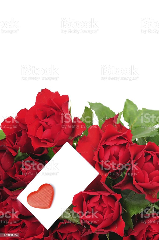 Scarlet roses bouquet with greeting card royalty-free stock photo