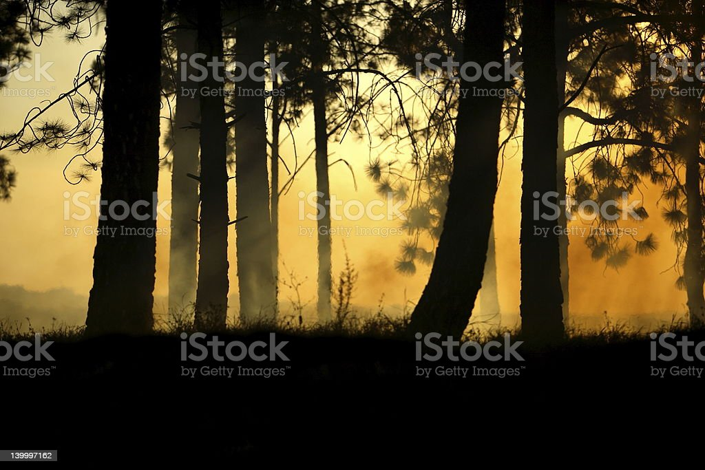 Scary background royalty-free stock photo