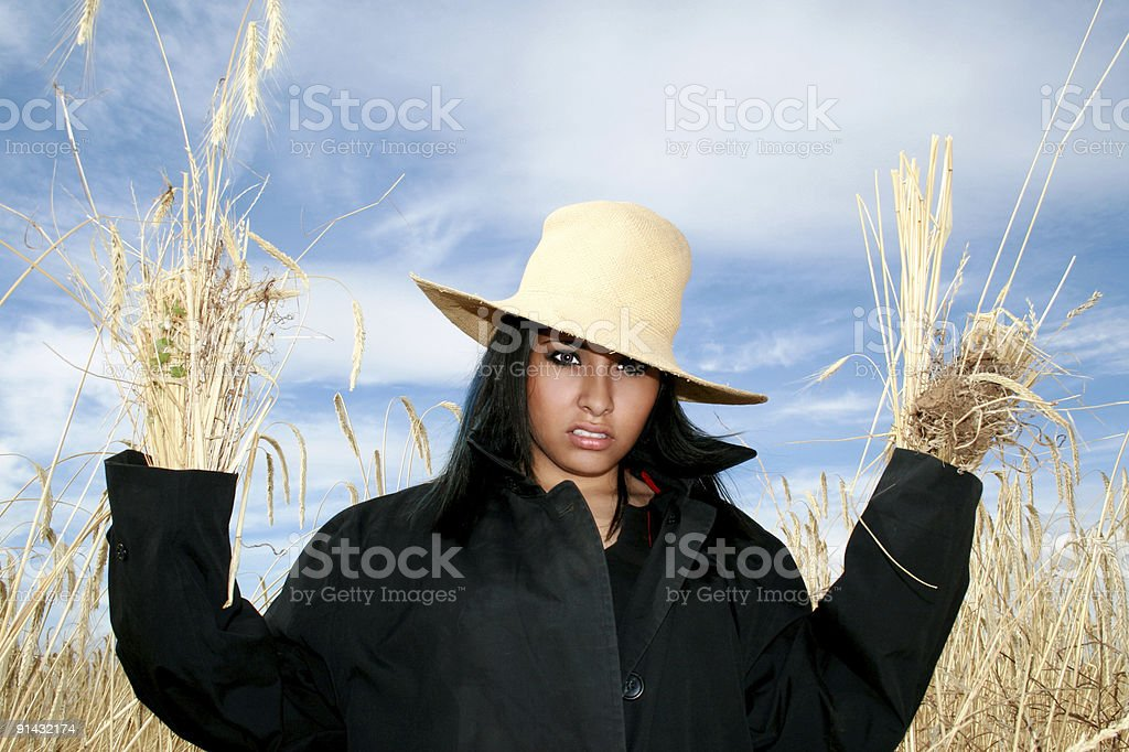 Scary Crow royalty-free stock photo