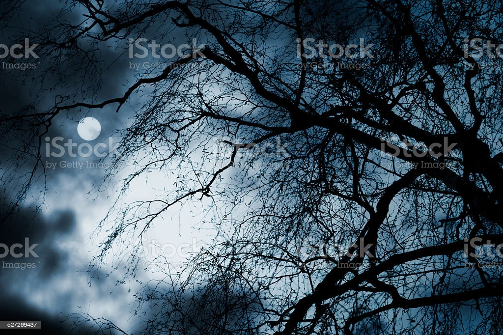 Scary dark scenery with naked trees, full moon and clouds stock photo