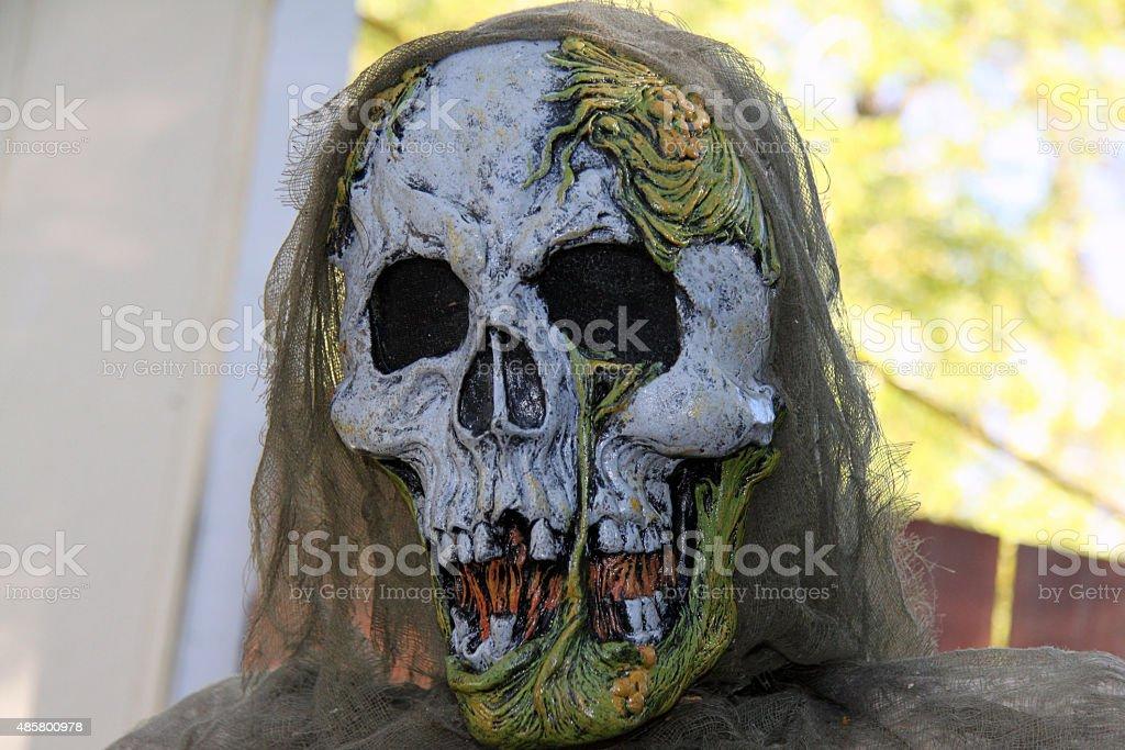 Scary Halloween skeleton face stock photo