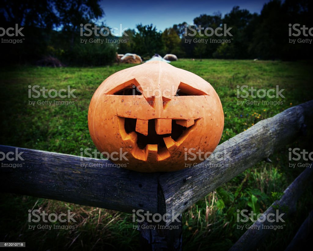 Scary pumpkin on Halloween stock photo