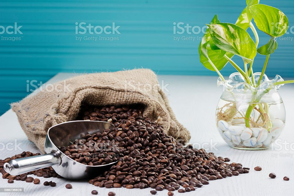 Scatter coffee bean stock photo