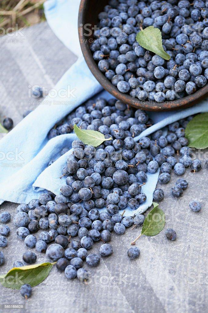 scattered berries Prunus stock photo