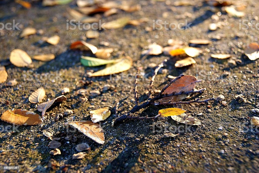 Scattered in the Alley royalty-free stock photo