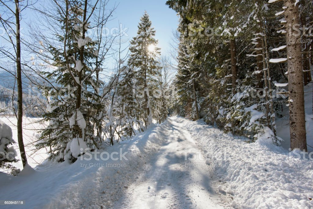 scene at winter with snow and ice on small road stock photo