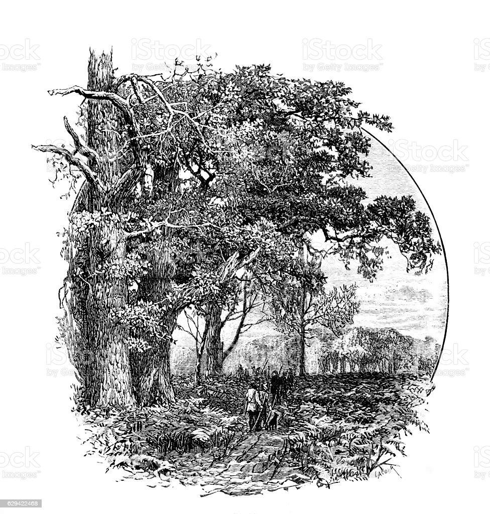 Scene from Robin Hood, Guy of Gisborne stock photo