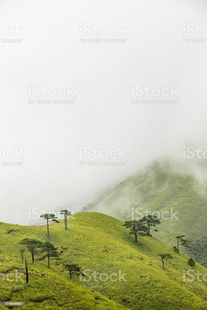 scene of mountain royalty-free stock photo