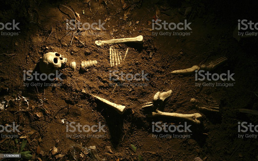 Scene of the Crime royalty-free stock photo