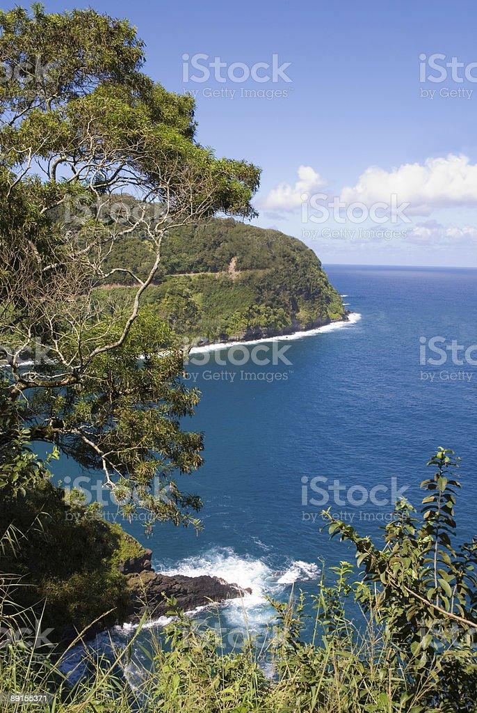 Scenery from Road to Hana in Maui, Hawaii royalty-free stock photo