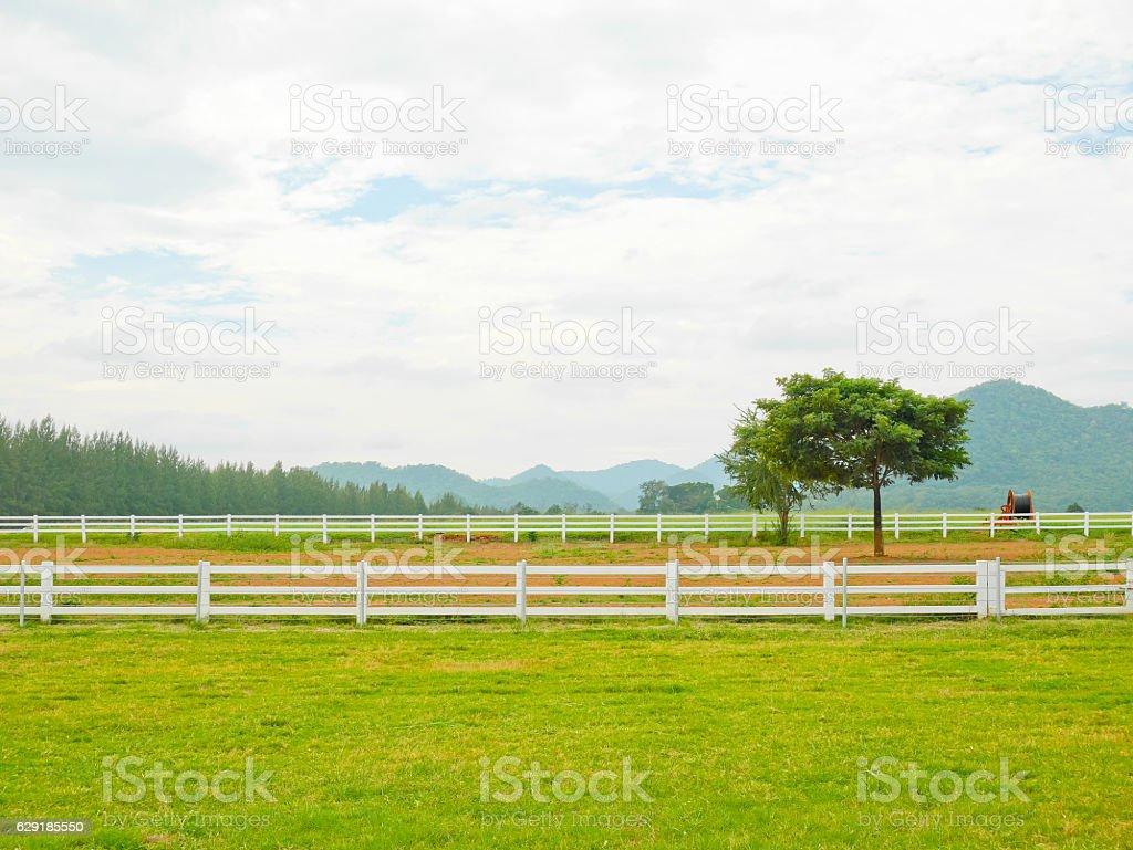 Scenery of farm and mountain stock photo